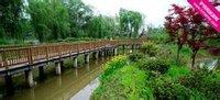 南京七桥瓮生态湿地公园
