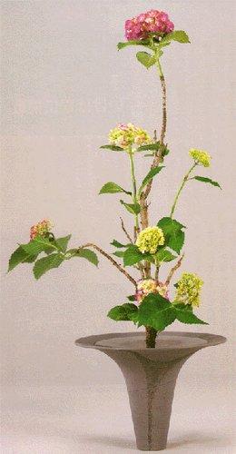 折叠 生花 江户时代池坊专好的门人,立花的名手之一的大树院以信