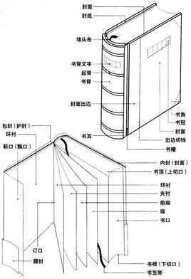 唐朝思维结构图