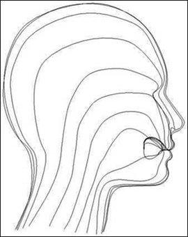说话人头矢量图