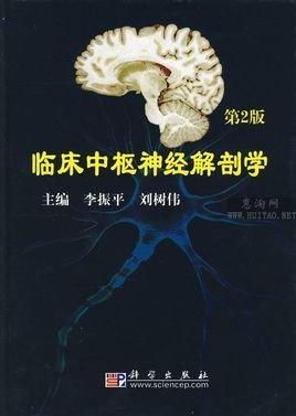 脊髓白质结构示意图
