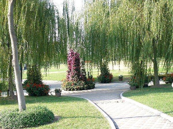 上海大学结构力学真题