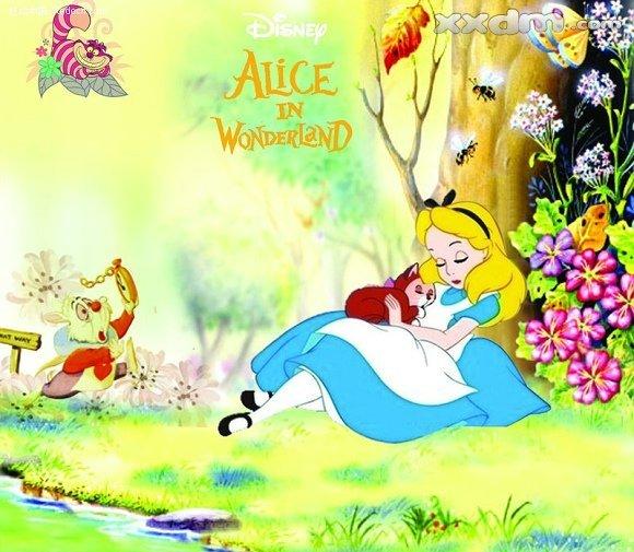 好奇的爱丽丝连忙起身,尾随兔子钻进隐蔽的洞里,并最终来到一个到处都