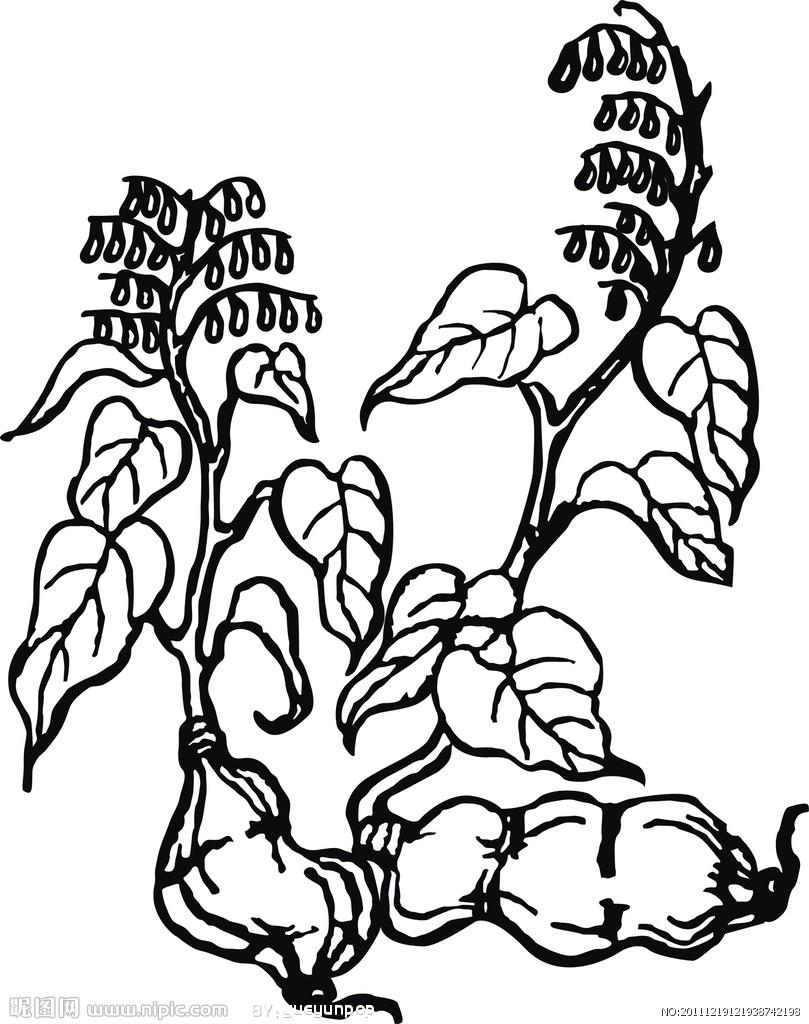简笔画 设计 矢量 矢量图 手绘 素材 线稿 809_1024 竖版 竖屏