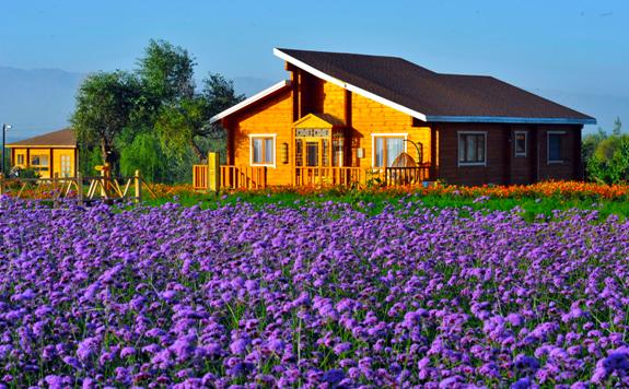 临安岛休闲度假区位于中国第四大沙漠腾格里沙漠东南缘,与腾格金沙别墅装修图片