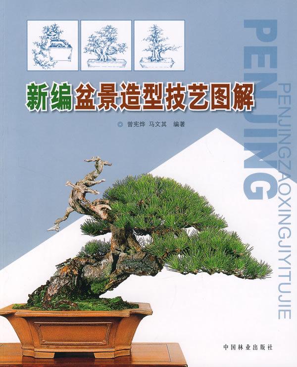 本书主要介绍岭南树木盆景造型技艺.全书共9章