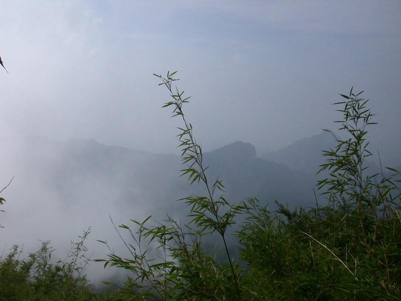 老界岭风景区